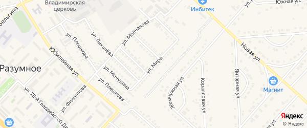 Улица Мира на карте поселка Разумного с номерами домов