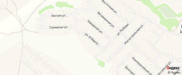 Улица 8 Марта на карте села Ближней Игуменки с номерами домов