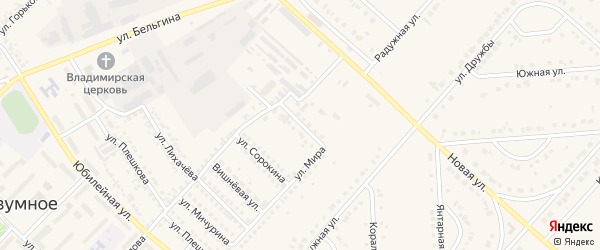 Новосадовая улица на карте поселка Разумного с номерами домов