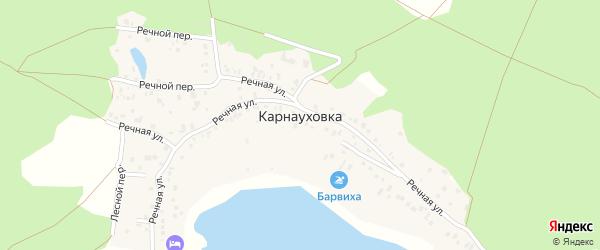Речной переулок на карте села Карнауховки с номерами домов