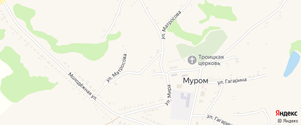 Улица Матросова на карте села Мурома с номерами домов