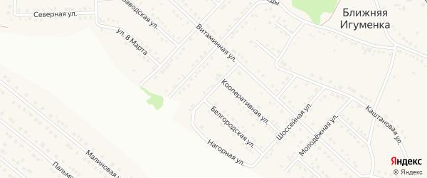 Дальний переулок на карте села Ближней Игуменки с номерами домов