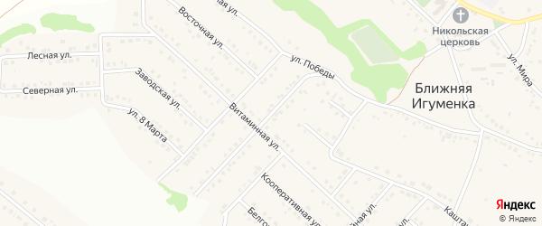 Магистральная улица на карте села Ближней Игуменки с номерами домов