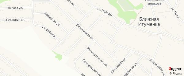 Витаминная улица на карте села Ближней Игуменки с номерами домов