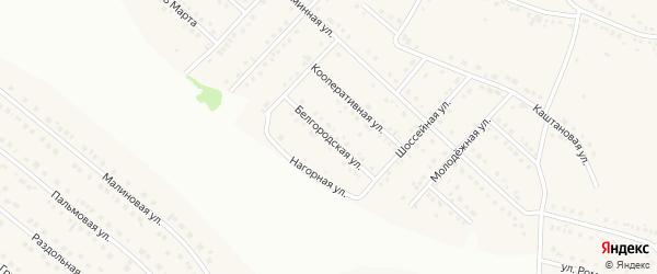 Белгородская улица на карте села Ближней Игуменки с номерами домов
