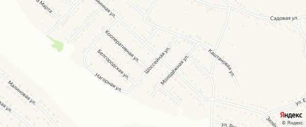 Шоссейная улица на карте села Ближней Игуменки с номерами домов