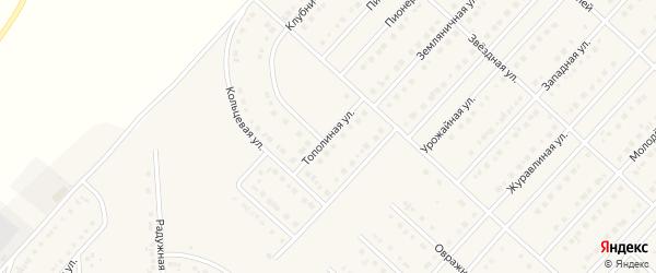 Тополиная улица на карте поселка Разумного с номерами домов