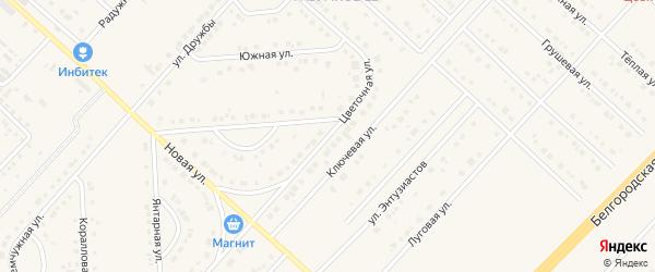 Цветочная улица на карте поселка Разумного с номерами домов