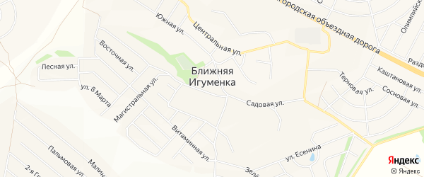 СТ Консервщик на карте села Ближней Игуменки с номерами домов
