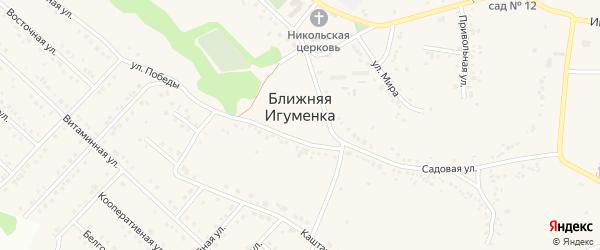 Дорожный переулок на карте села Ближней Игуменки с номерами домов
