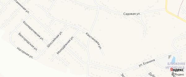 Каштановая улица на карте села Севрюково с номерами домов