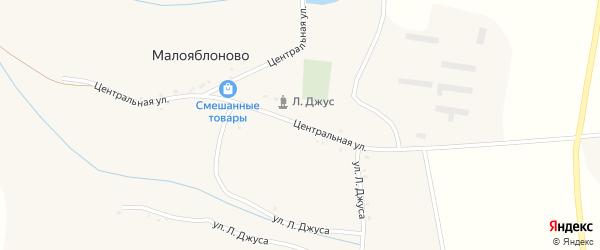 Центральная улица на карте села Малояблоново с номерами домов