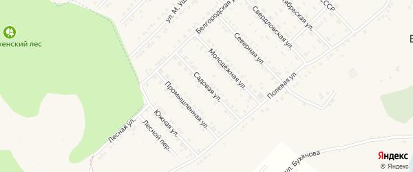Садовая улица на карте Беловского села с номерами домов