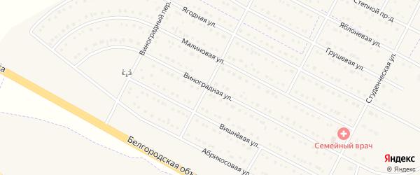 Виноградная улица на карте села Севрюково с номерами домов