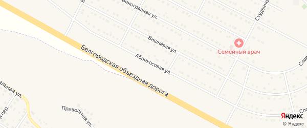 Абрикосовая улица на карте села Севрюково с номерами домов