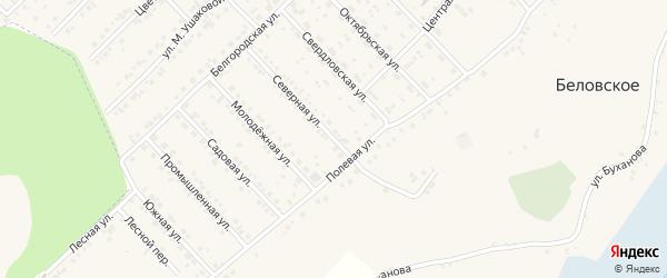 Северная улица на карте поселка Разумного с номерами домов