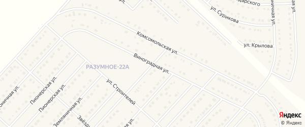 Виноградная улица на карте поселка Разумного с номерами домов