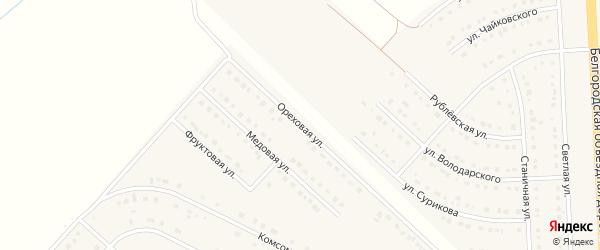 Ореховая улица на карте поселка Разумного с номерами домов