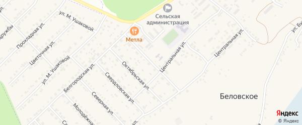 Улица 60 лет СССР на карте Беловского села с номерами домов