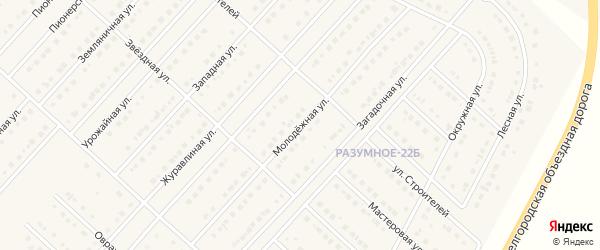 Молодежная улица на карте поселка Разумного с номерами домов