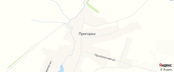 Карта хутора Пригорки в Белгородской области с улицами и номерами домов