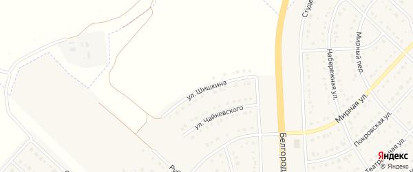 Улица Шишкина на карте поселка Разумного с номерами домов