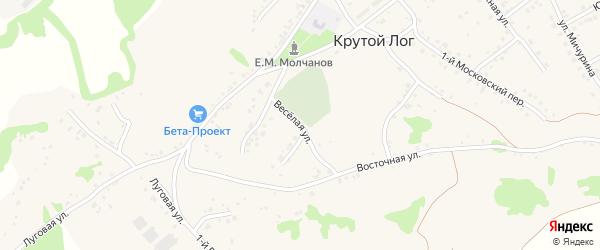 Веселая улица на карте села Крутого Лога с номерами домов