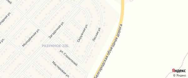 Лесная улица на карте поселка Разумного с номерами домов