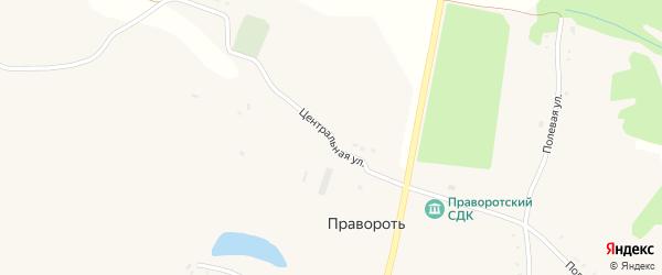 Центральная улица на карте села Правороти с номерами домов