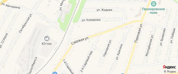 Садовая улица на карте поселка Прохоровка с номерами домов