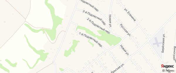 Подлестный 1-й переулок на карте села Крутого Лога с номерами домов