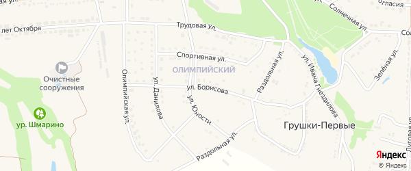 Улица Борисова на карте поселка Прохоровка с номерами домов