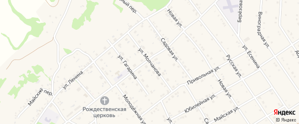 Улица Молчанова на карте села Крутого Лога с номерами домов