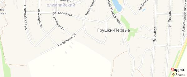 Улица Петра Гостищева на карте хутора Грушки-Первые с номерами домов