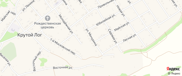 Улица Мичурина на карте села Крутого Лога с номерами домов