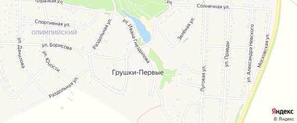 Улица Ивана Гнездилова на карте хутора Грушки-Первые с номерами домов