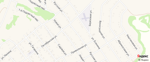 Русская улица на карте поселка Разумного с номерами домов
