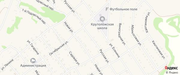 Русская улица на карте села Крутого Лога с номерами домов