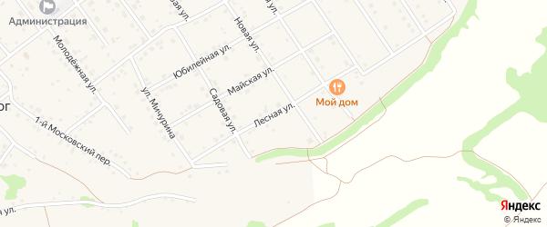Лесная улица на карте села Крутого Лога с номерами домов