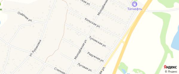 Туломская улица на карте села Дальней Игуменки с номерами домов