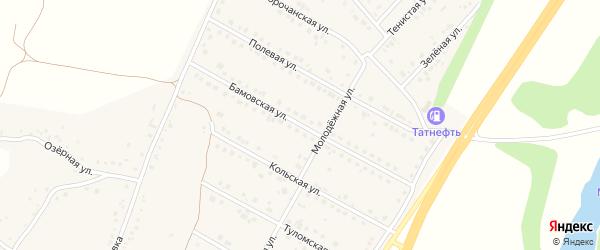 Бамовская улица на карте села Дальней Игуменки с номерами домов