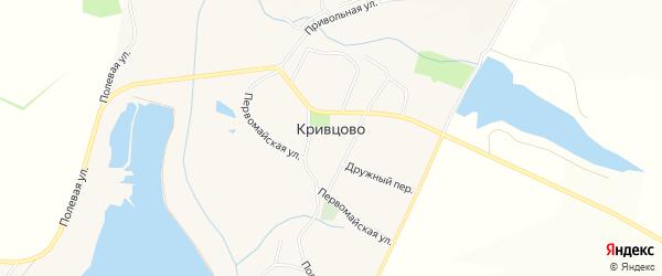 Карта села Кривцово в Белгородской области с улицами и номерами домов