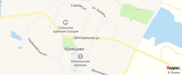 Центральная улица на карте села Кривцово с номерами домов