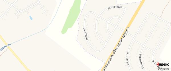 Улица Удачи на карте поселка Разумного с номерами домов