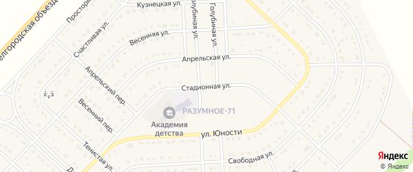 Стадионная улица на карте поселка Разумного с номерами домов
