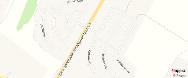 Уютная улица на карте поселка Разумного с номерами домов