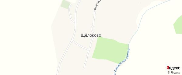 Садовая улица на карте села Щелоково с номерами домов