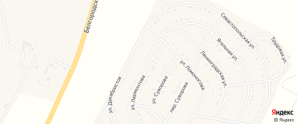 Улица Лермонтова на карте поселка Разумного с номерами домов