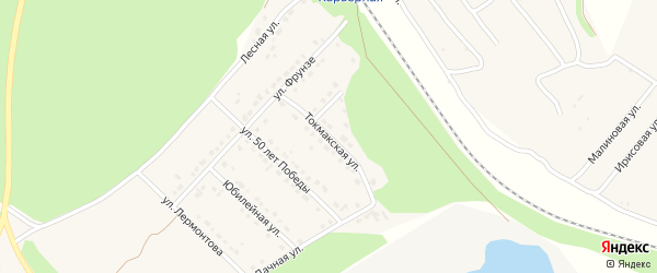 Токмакская улица на карте села Безлюдовки с номерами домов