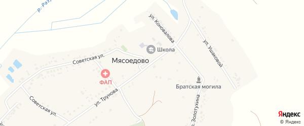 Улица Трунова на карте села Мясоедово с номерами домов